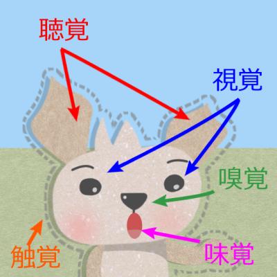 英語 知覚動詞